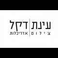לוגו עינת דקל צילום