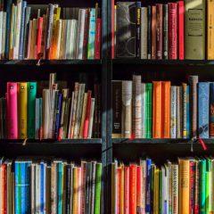 השלבים בהוצאת ספר לאור